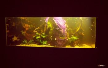 Flußmonster im Studio-Tank